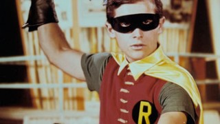The 1960s Robin